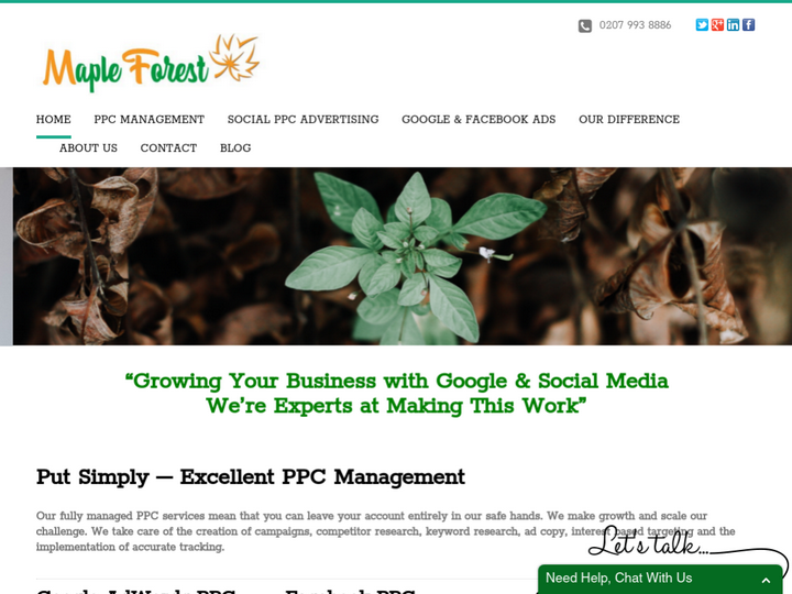 Maple Forest Marketing Ltd