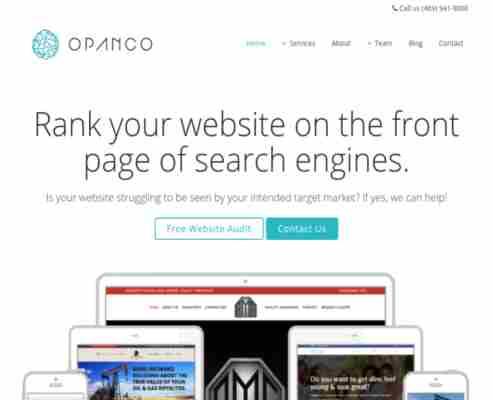 OPANCO LLC