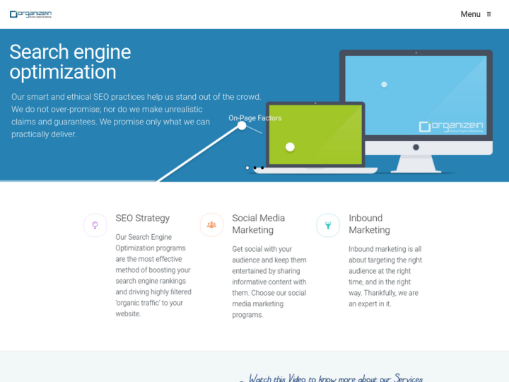 Orgnaizein Global Digital Marketing
