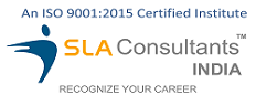 SLA Consultants India - Digital Marketing Training in Delhi