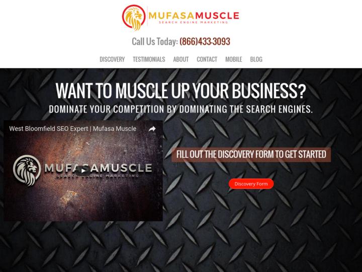 Mufasa Muscle Bloomfield SEO Expert