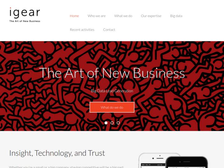 iGear Internet Marketing