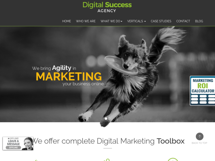 Digital Success Agency