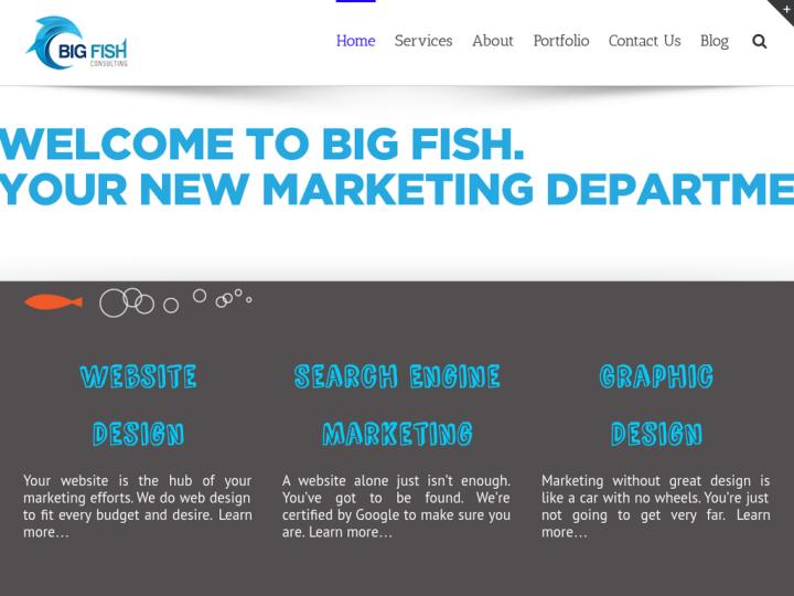 Big Fish Consulting