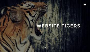 Website Tigers