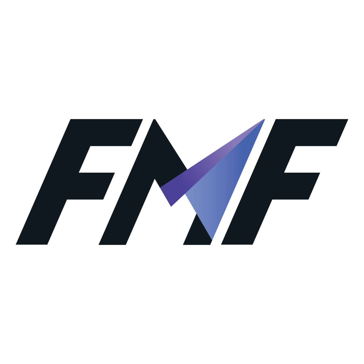 FMF Co., Ltd.