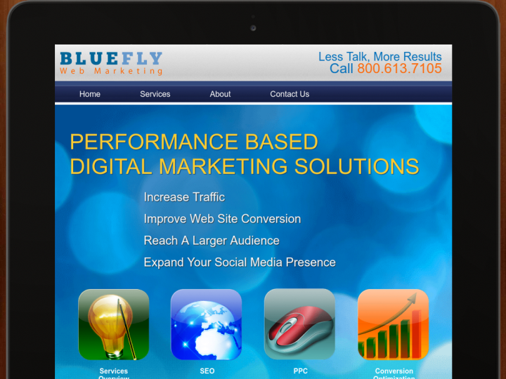 Blue Fly Web Marketing