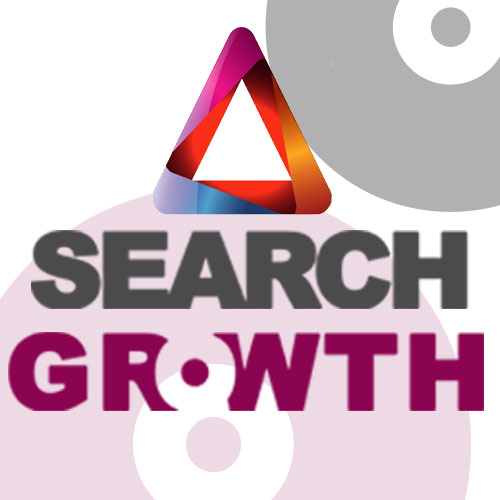 Search Growth SEO Company
