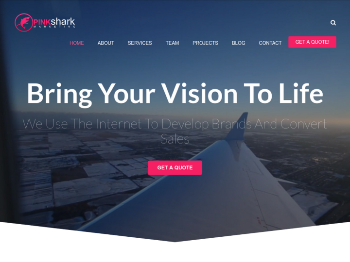Pink Shark Marketing