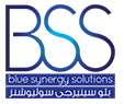 Blue Synergy Solutions