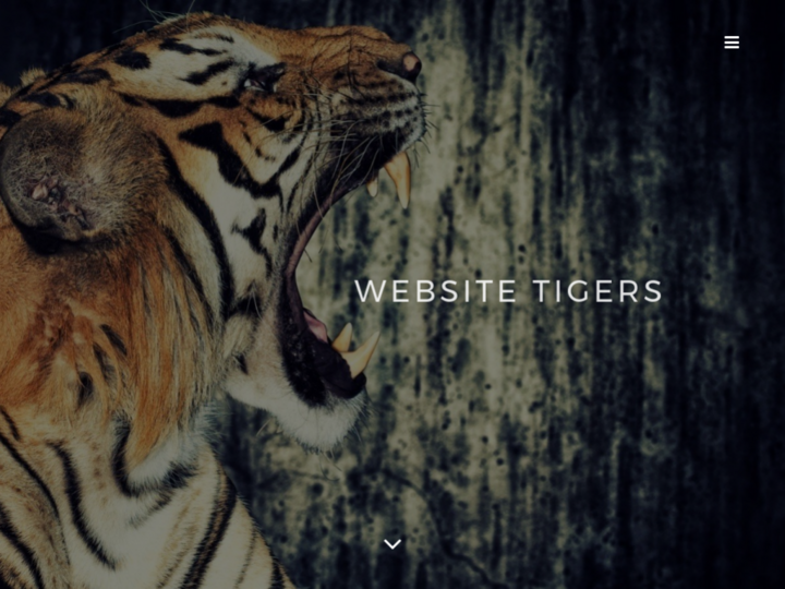 Website Tigers