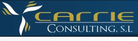 Carrie Consulting