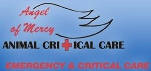 Angel Of Mercy Animal Critical Care