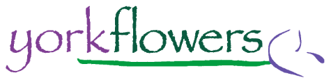 York Flowers