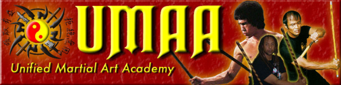 Unified Martial Art Academy